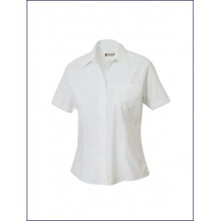 1015 CL - Camicia donna stretch manica corta 125 gr